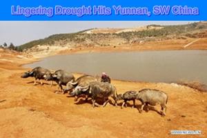 Lingering drought hits Yunnan, SW China
