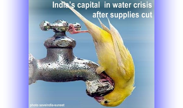 India's capital in water crisis after supplies cut