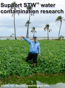 save the water water contamination research