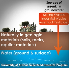 The Superfund Research Program at the University of Arizona uses an interdisciplinary approach to study hazardous waste issues in the U.S. Southwest (and Mexico border). We focus on arsenic, chlorinated solvents, and mine tailings.