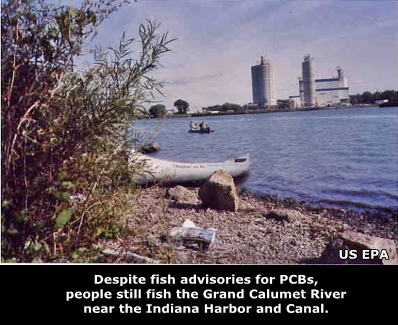 Despite fish advisories for PCBs, people still fish the Grand Calumet River near the Indiana Harbor and Canal.
