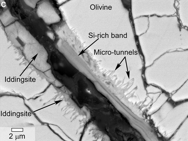 Meteorite evidence of water on Mars