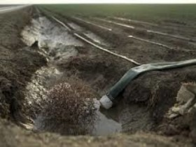 Contaminated Irrigation Ditch