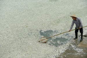 severe water pollution