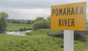 Pomahaka farmers are being urged to jump on board a community scheme to clean up the the Pomahaka catchment. (Photo credit:  LAUREN HAYES/Fairfax NZ)