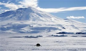 A lone foraging emperor penguin ''toboggans'' on its belly across the frozen Ross Sea, with the live volcano Mount Erebus in the background, off Ross Island, Antarctica, December 9, 2006. - (Photo credit: Reuters)