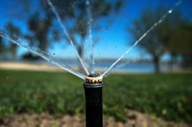water advisory committee