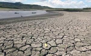 Drought affected land (Photo credit: Representational Image - Reuters Photo)