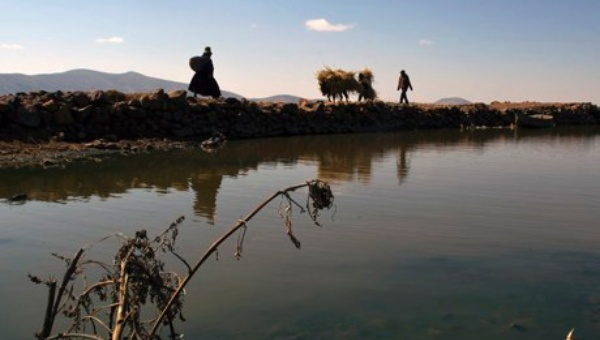 Lake Titicaca may have a new solution