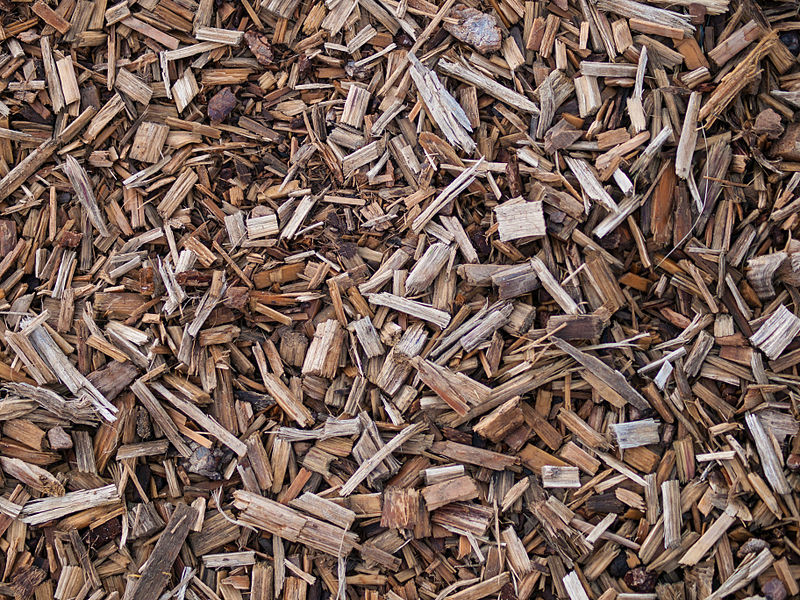 Reducing nitrate contamination of water with wood chips