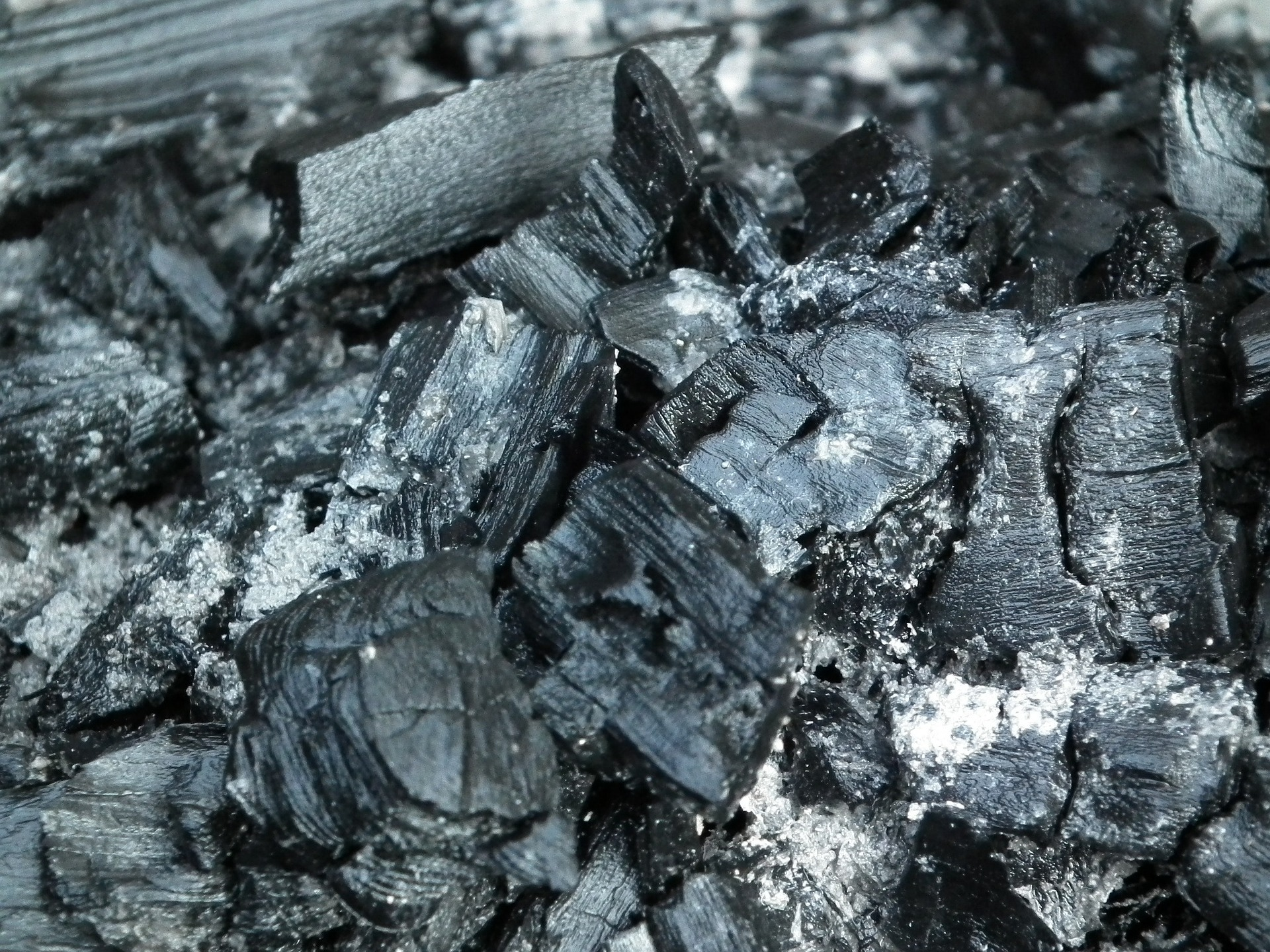 Ash From Coal ~ Lake pollution by selenium save the water™